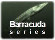 Barracuda series GE Energy